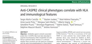 Anti CASPR2 Article